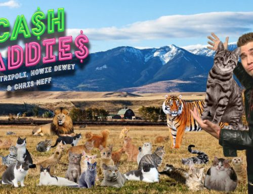 Cash Daddies #43: Chris Goes Long On DraftKings, AirBNB & Cat Breath
