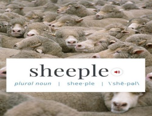 TFH #468: How To Talk To Sheeple 101 With Benny Wills