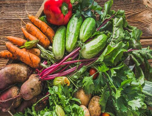 #480: Food Forest Abundance with Jim Gale ****(Must Listen)*****